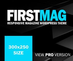 300x250-view-pro